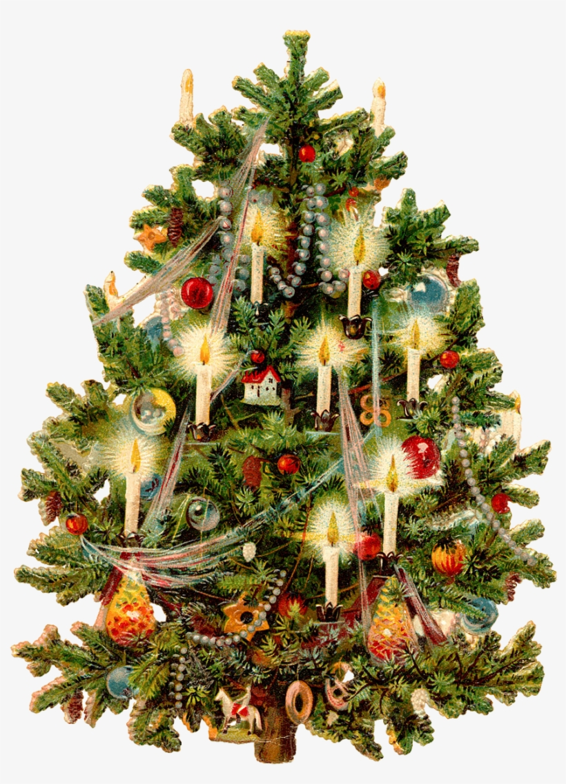 8 84666 christmas tree free png transparent background images old